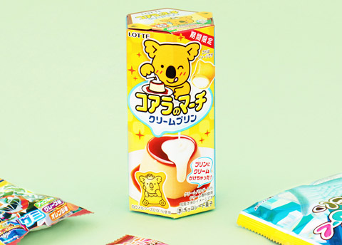 Lotte Koala's March Cookies - Cream Pudding